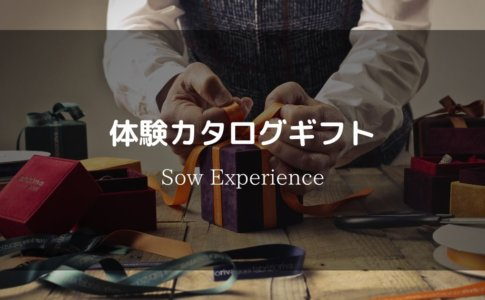 SowExperience